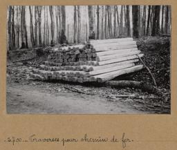 Traverses pour chemin de fer | Houdard, Georges (1883-1944). Photographe