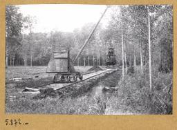 [Travaux en forêt] | Houdard, Georges (1883-1944). Photographe
